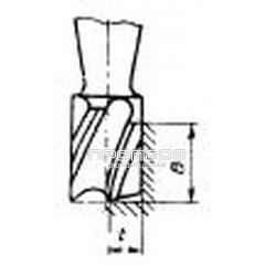 Фреза концевая с твердосплавными пластинами ВК8 D=31,0 мм к/хв